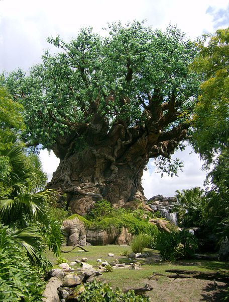Problems With Animal Kingdom Tree of Life