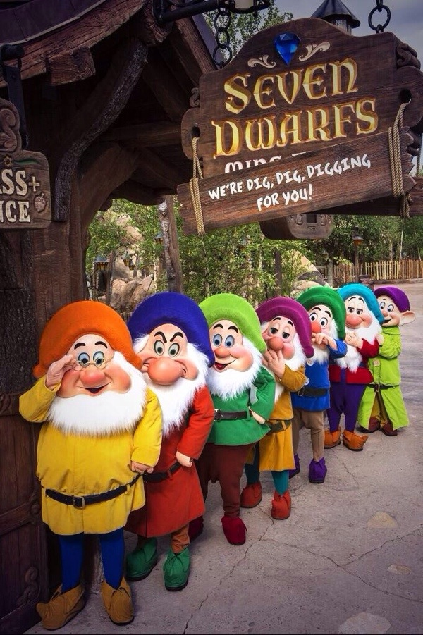 Seven Dwarfs Mine Train Official Opens 28th May 2014